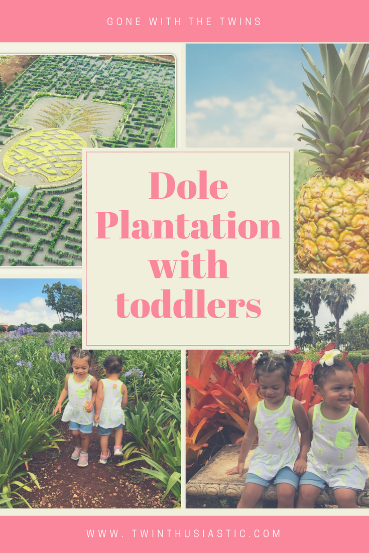 dole plantation with twins.png